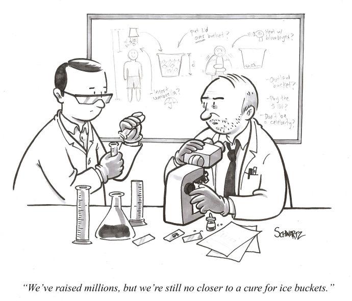 Daily-cartoon-140821-ice-bucket-690-591