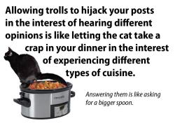 Cat troll