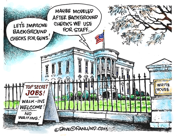 Gun-background-checks